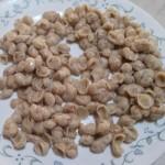 flax seashell noodles